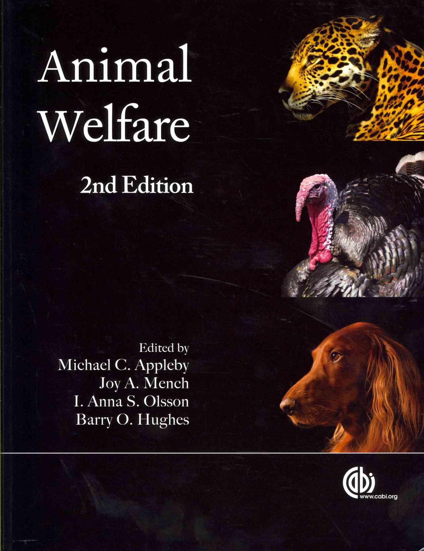 Animal Welfare By Hughes, Barry O.